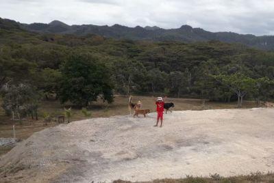 Pour les enfants - GITE LES CIGALES - Koumac - Nouvelle-Calédonie