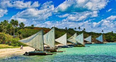 Affiliations - THE NEW CALEDONIA EXPLORER - Excursions organisées en bus et bateau - Nouméa - Nouvelle-Calédonie