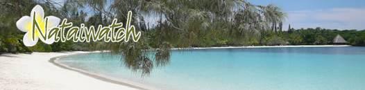 Tarifs - GITE NATAIWATCH & Camping, Restaurant - Ile des Pins - Nouvelle-Calédonie