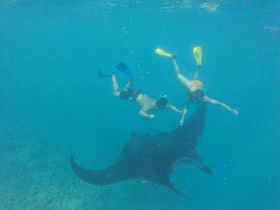 MANA NAUTIQUE -  Excursions - Île des Pins - Photo 4 - Nouvelle-Calédonie