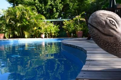 ESCAPADE DU NORD  - Chambre d'hôte - Koumac - Photo 1 - Nouvelle-Calédonie