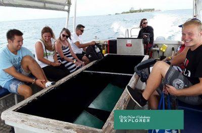 THE NEW CALEDONIA EXPLORER - Excursions organisées en bus et bateau - Nouméa - Photo 1 - Nouvelle-Calédonie