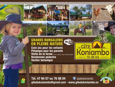GITE DU KONIAMBO - VOH - Photo 1 - Nouvelle-Calédonie