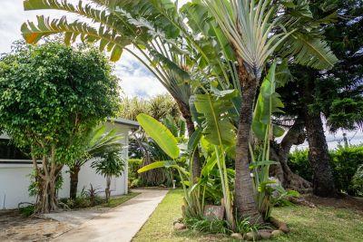 PATRICIA ESPACE BIEN ETRE EN FAMILLE - Yoga & massages - Nouméa - Photo 2 - Nouvelle-Calédonie
