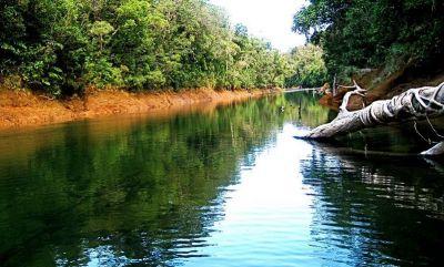 PARC DE LA RIVIERE BLEUE - Parc Provincial - Yaté - Photo 1 - Nouvelle-Calédonie