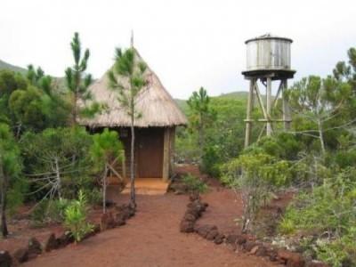 SITE DE NETCHA - Espace de loisirs Chutes de la Madeleine - Yaté - Photo 2 - Nouvelle-Calédonie