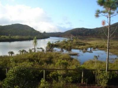 SITE DE NETCHA - Espace de loisirs Chutes de la Madeleine - Yaté - Photo 4 - Nouvelle-Calédonie