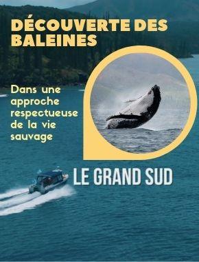 CASY EXPRESS - Taxi boat - Prony, Mont-Dore - Nouvelle-Calédonie - Photo 6 - Nouvelle-Calédonie