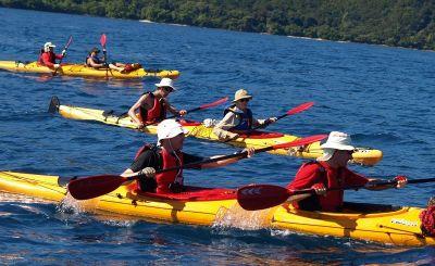 TERRAVENTURE - Excursions, Activités Plein Air - Nouvelle-Calédonie - Photo 2 - Nouvelle-Calédonie