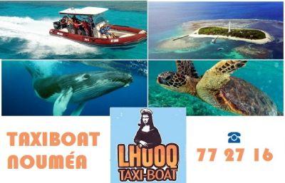 LHOOQ - Taxi boat, Visite au Phare Amédée - Nouméa - Photo 1 - Nouvelle-Calédonie