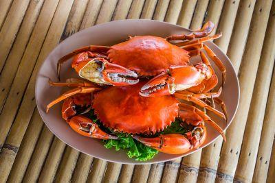 CACAO SAMPAKA - Restaurant cuisine du monde - Nouméa - Photo 3 - Nouvelle-Calédonie
