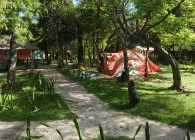 GITE NATAIWATCH & Camping, Restaurant - Ile des Pins - Photo 2 - Nouvelle-Calédonie