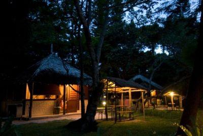 GITE NATAIWATCH & Camping, Restaurant - Ile des Pins - Photo 4 - Nouvelle-Calédonie