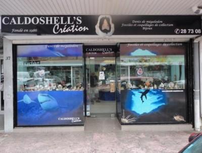 Caldoshell's Création - Bijoux et Sculpture corail noir - Dents de Mégalodon - Nouméa - Photo 4 - Nouvelle-Calédonie