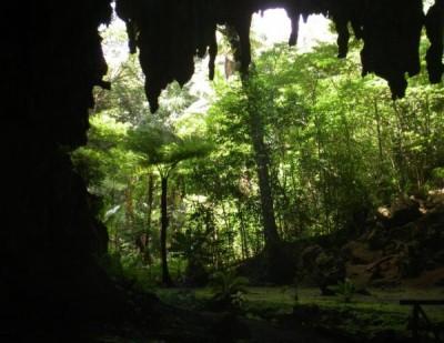 Grotte d'Oumagne dite Grotte de la Reine Hortense - Ile des Pins - Photo 1 - Nouvelle-Calédonie