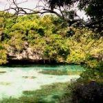 AQUARIUM NATUREL - Maré - Nouvelle-Calédonie