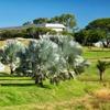 Parc municipal Georges-Brunelet du Receiving - Nouméa - Nouvelle-Calédonie