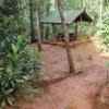 SITE DES BOIS DU SUD - Camping Rivière Bleue - Yaté - Nouvelle-Calédonie