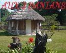 GITE LES 3 BANIANS - Chez Jacques et Rosemarie Apikaoua - Ile des Pins
