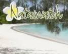 GITE NATAIWATCH & Camping, Restaurant - Ile des Pins