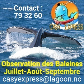 CASY EXPRESS - Taxi boat - Prony, Mont-Dore - Nouvelle-Calédonie